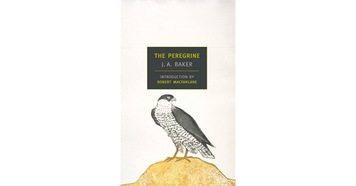The Peregrine by J A  Baker