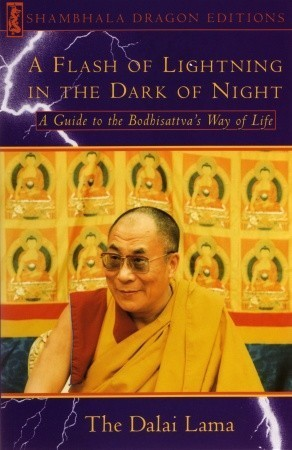 Dalai Lama A FLASH OF LIGHTNING IN THE DARK OF NIGHT