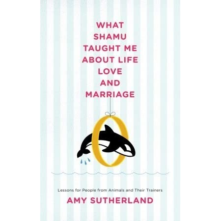 "what shamu taught me about a happy marriage thesis What shamu taught me what shamu taught me about life, love and marriage: her feature piece ""what shamu taught me about a happy marriage."