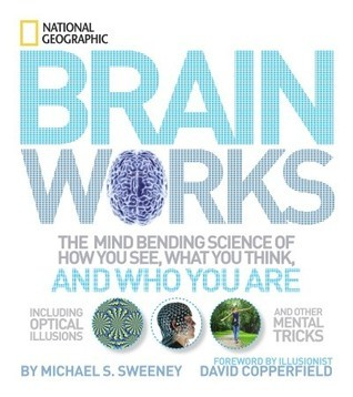 Brainworks - The Mind-bending Science of How You See, What You Think, and Who You Are