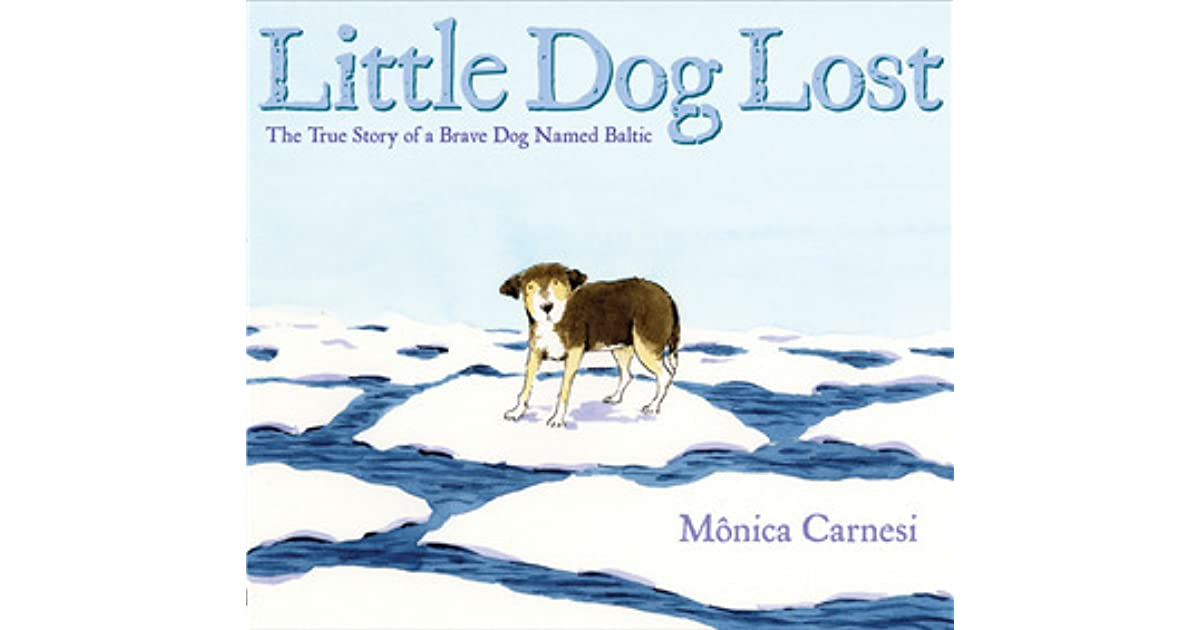 essay on autobiography of dog