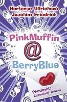 PinkMuffin@BerryBlue. Předmět: Zatoulaný email