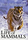 The Life of Mammals