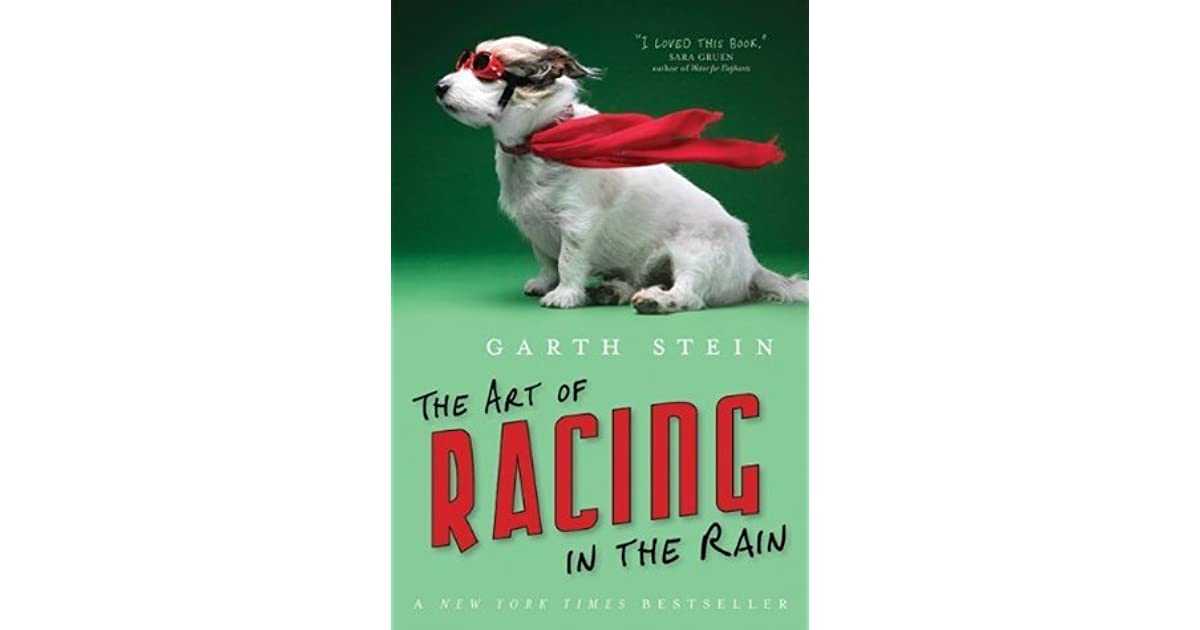 The Art Of Racing In The Rain: The Art Of Racing In The Rain By Garth Stein