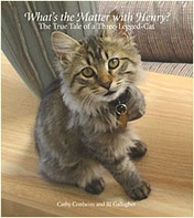 What's the Matter with Henry? The True Tale of a Three-legged Cat
