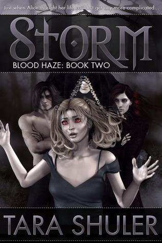 Storm (Blood Haze, #2)