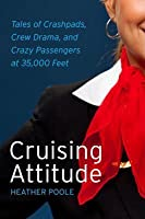 Cruising Attitude: My Life at 35,000 Feet
