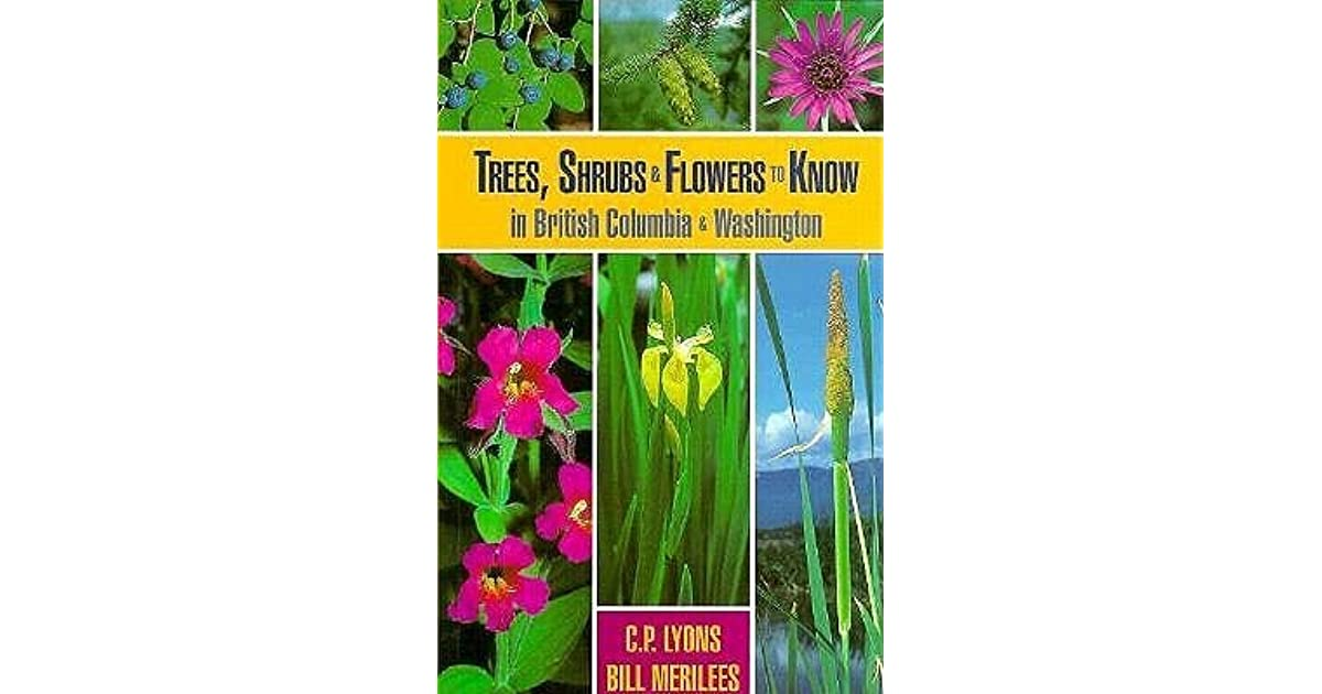 Shrubs and Flowers to Know in Washington and British Columbia Trees