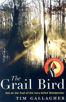 The Grail Bird: Hot on the Trail of the Ivory-billed