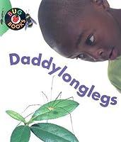 Daddylonglegs