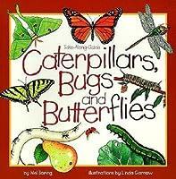 Caterpillars, Bugs, and Butterflies