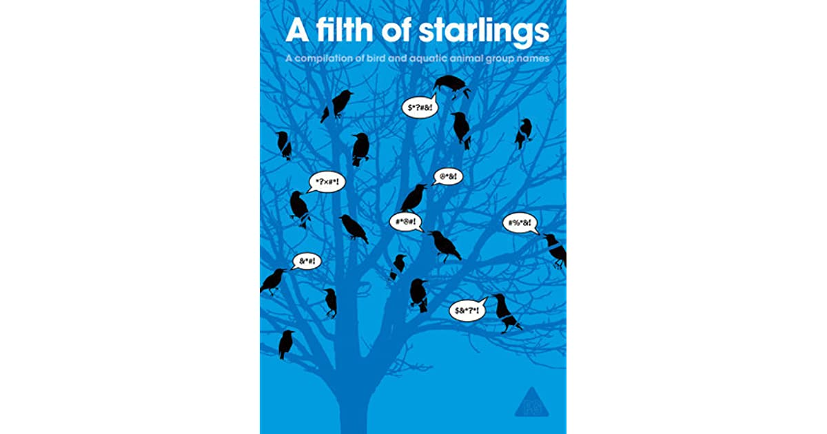 a filth of starlings a compilation of bird and aquatic animal group