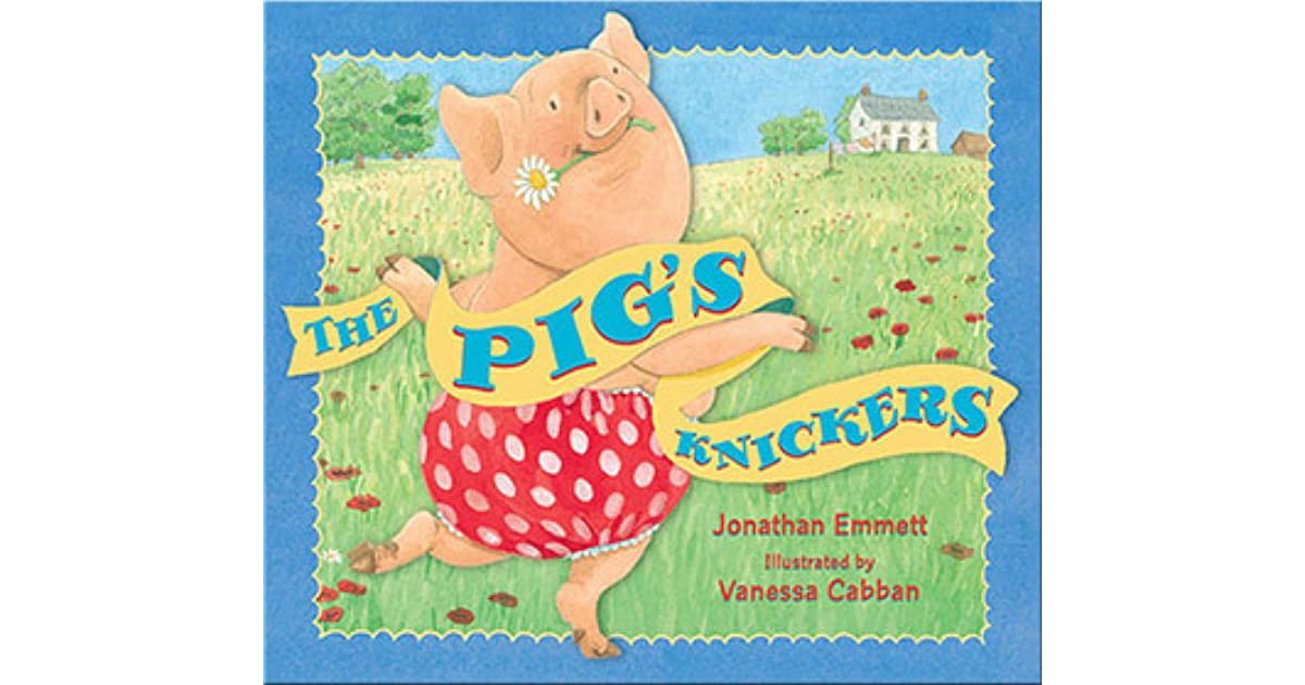 Image result for pigs knickers
