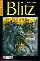 Blitz und Vulkan (Blitz, #4)