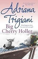Big Cherry Holler (Big Stone Gap, #2)