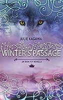 Winter's Passage (Iron Fey, #1.5)