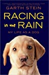 Racing in the Rain by Garth Stein