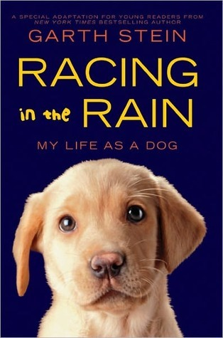 Read Racing In The Rain My Life As A Dog By Garth Stein