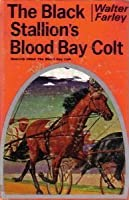 The Black Stallion's Blood Bay Colt by Walter Farley (1950, Paperback)