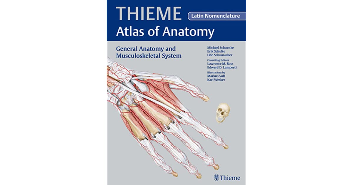 General Anatomy and Musculoskeletal System - Latin Nomencl. by ...