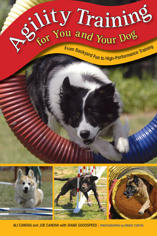 Agility Training for You and Your Dog: From Backyard Fun to High-Performance Training