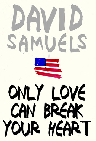 Only Love Can Break Your Heart by David Samuels