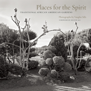 Places for the Spirit by Vaughn Sills
