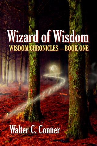 Wizard Of Wisdom (Wisdom Chronicles #1)