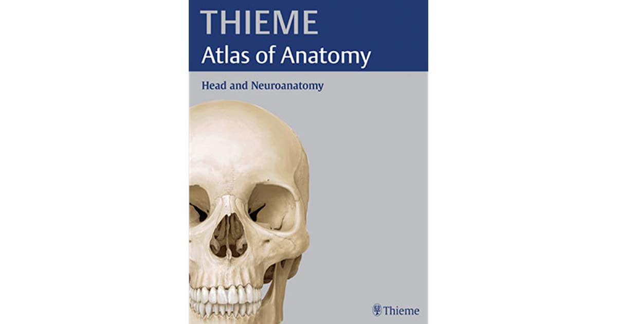THIEME Atlas of Anatomy: Head and Neuroanatomy by Michael Schünke