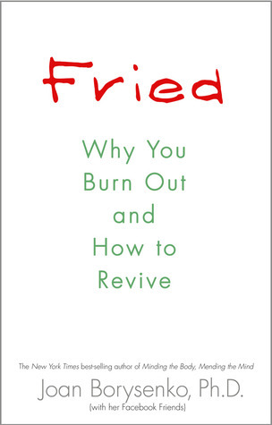 Fried  Why You Burn Out and How to Revive (2011, Hay House)