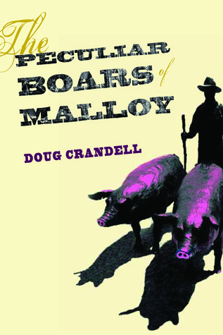The Peculiar Boars of Malloy