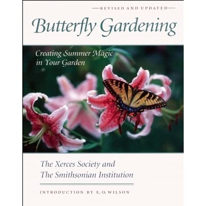 How to Plan, Grow and Care for a Butterfly Garden