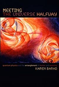 Meeting the Universe Halfway: Quantum Physics and the Entanglement of Matter and Meaning