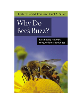 Why-Do-Bees-Buzz-Fascinating-Answers-to-Questions-about-Bees-Animal-Q-a-Series-