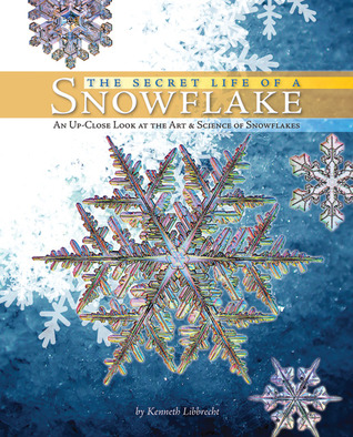 The Secret Life of a Snowflake: An Up-Close Look at the Art and Science of Snowflakes