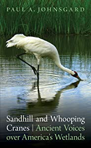 Sandhill and Whooping Cranes: Ancient Voices over America's Wetlands