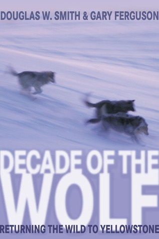 Decade of the Wolf: Returning the Wild to Yellowstone