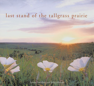 Last Stand of the Tall Grass Prairie
