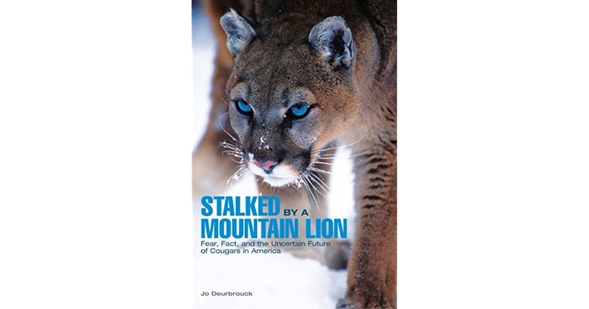 Stalked By A Mountain Lion Fear Fact And The Uncertain Future Of Cougars In America By Jo Deurbrouck