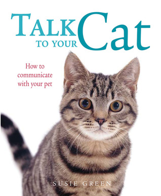 How to Communicate with Your Cat