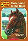 Racehorse in the Rain (Animal Ark: Holiday Special, #9)