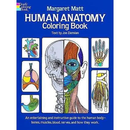 Human Anatomy Coloring Book By Margaret Matt