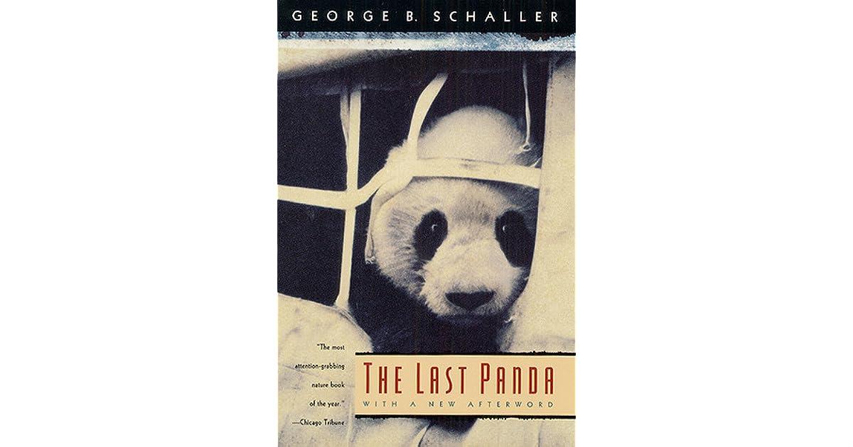 Последняя панда