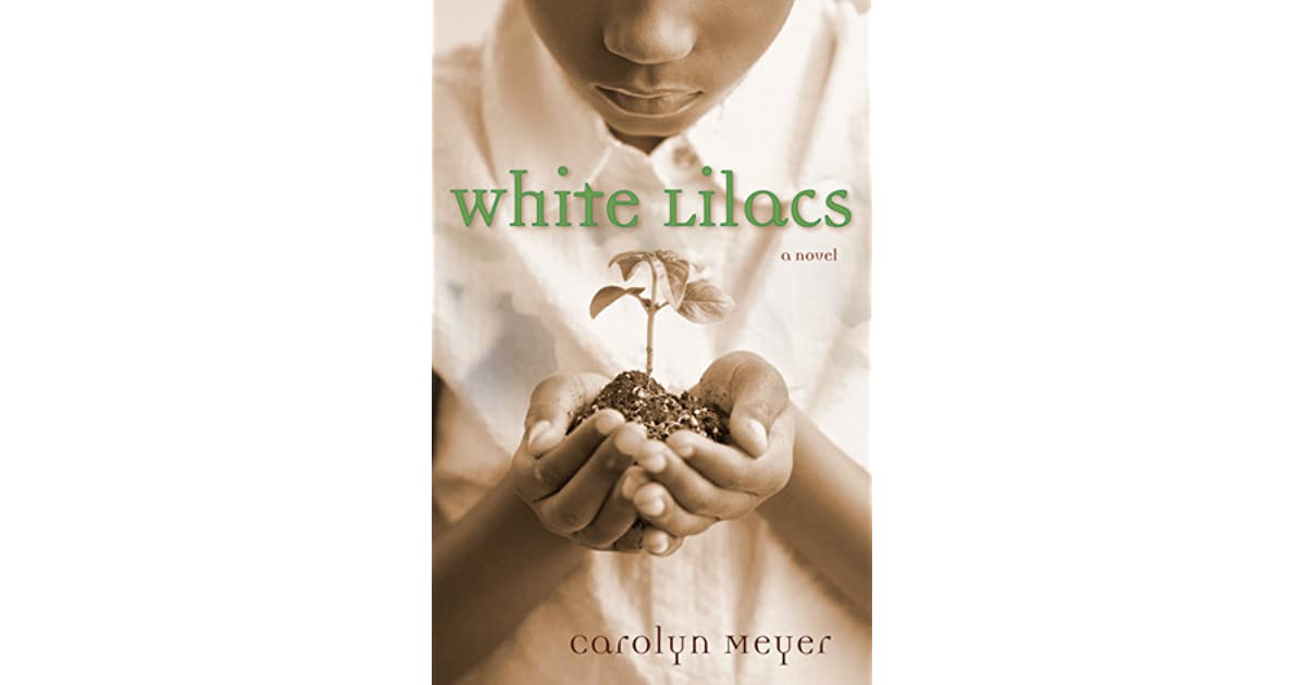 white lilacs summary