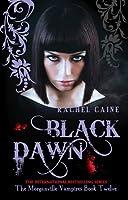 Black Dawn (The Morganville Vampires, #12)