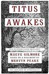 Titus Awakes: The Lost Book of Gormenghast (Gormenghast, #4)
