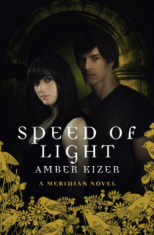 Speed of Light (Fenestra, #3)