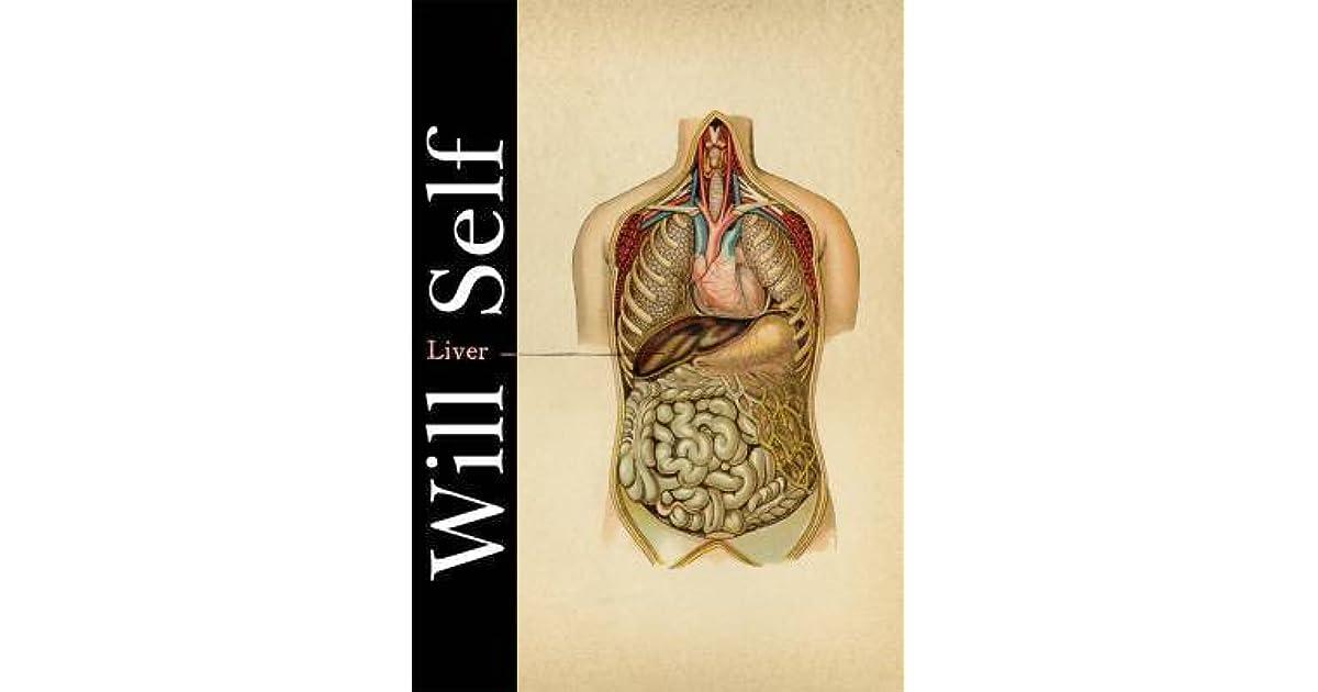 Jeruens Review Of Liver A Fictional Organ With A Surface Anatomy