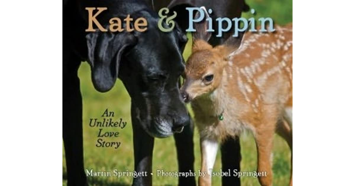 Friends Kate Pippin An Unlikely Love Story Youtube Kate Pippin An Unlikely Love Story By Martin Springett