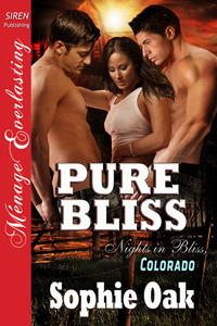 Pure Bliss (Nights in Bliss, Colorado, #6)